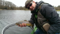 1 1/4lb Brown Trout